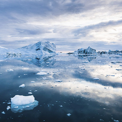 Antarctic seas - fish products traceability