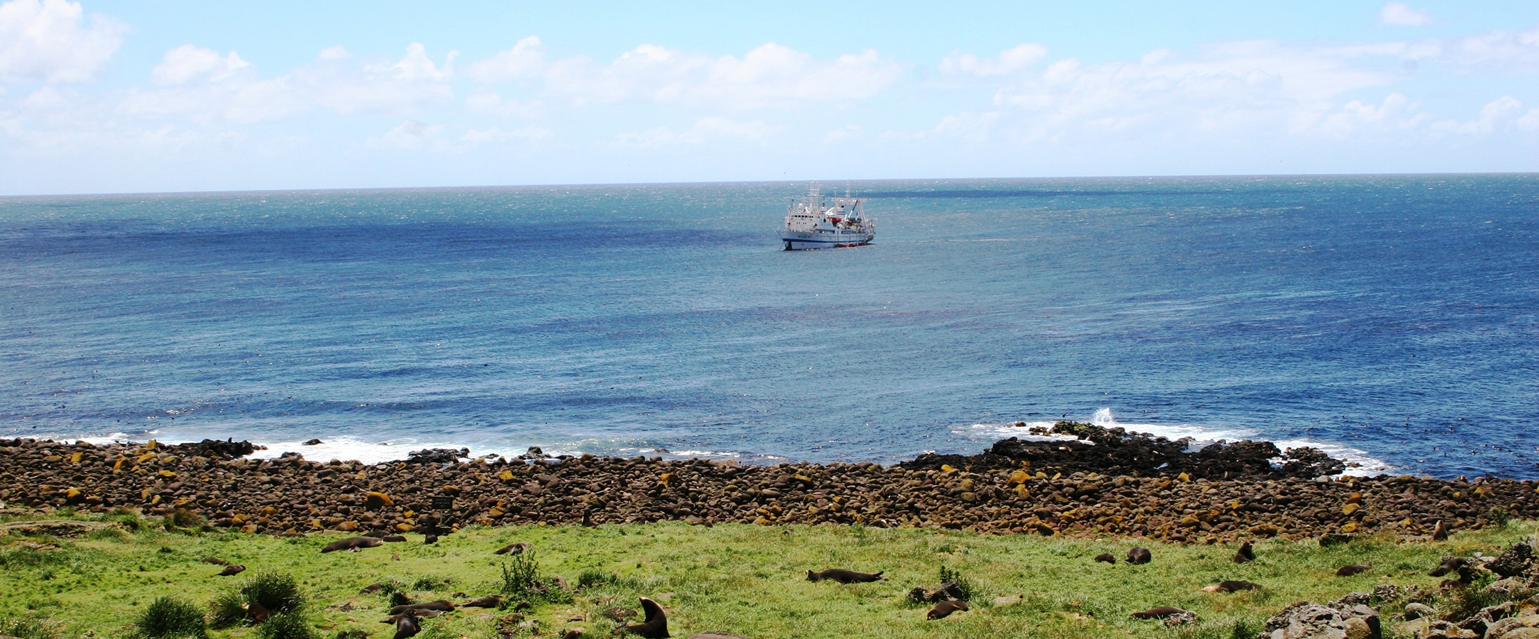 Southern seas and Antarctic lands fisheries - Sapmer contact us