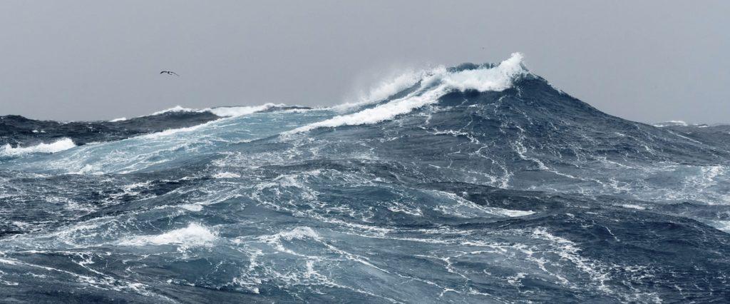 Waves of the Indian Ocean - SAPMER FISHERIES