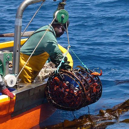 Marine resources management